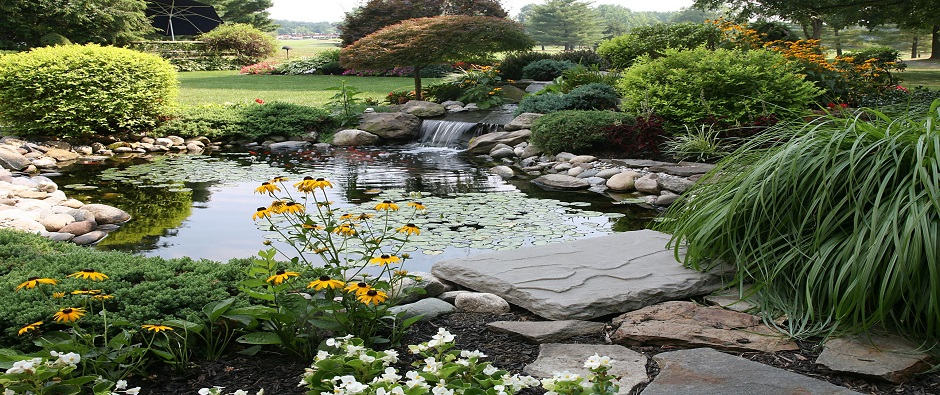 We provide landscaping<br /> services since 1978